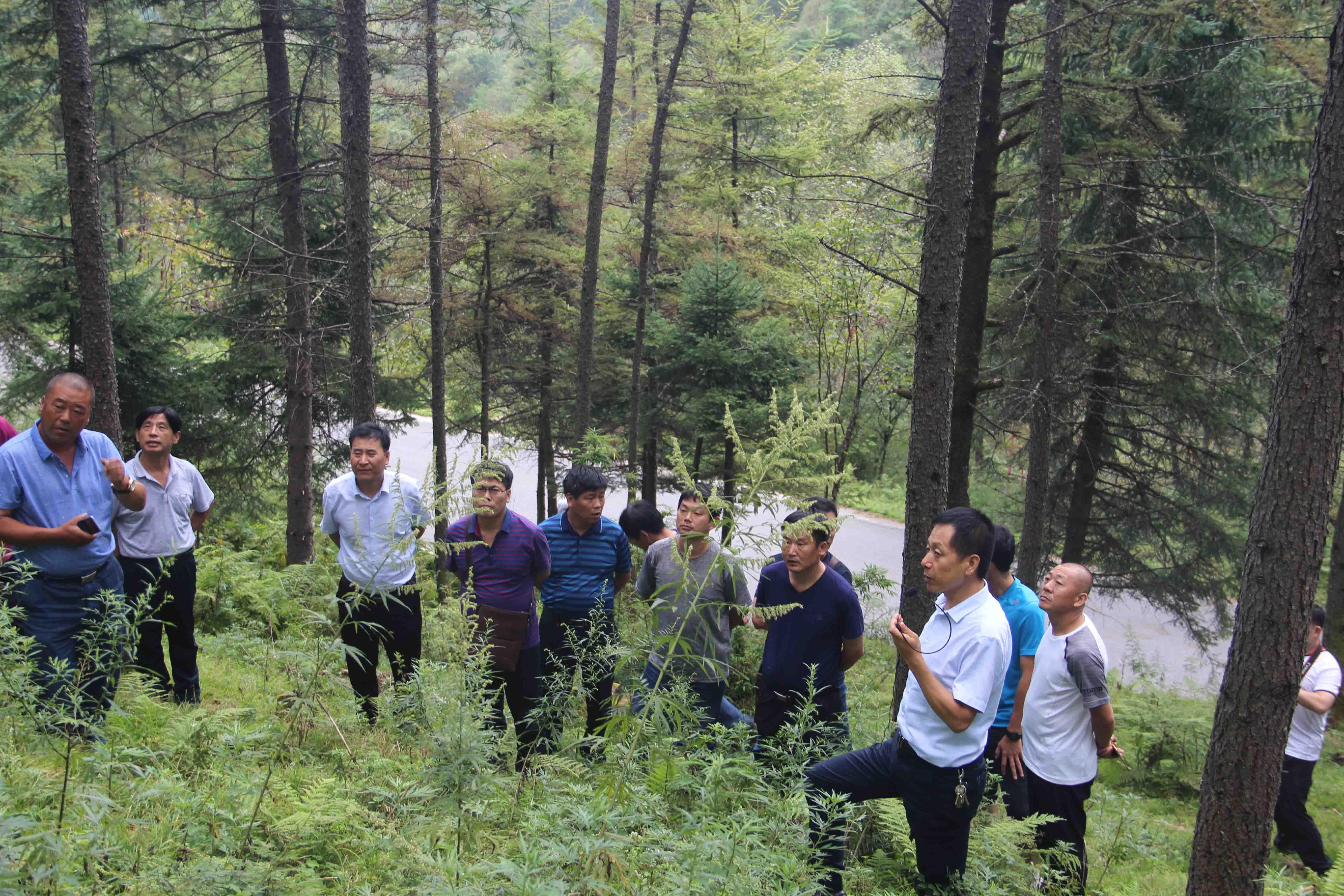 山东省荣成市林业局一行莅临我局调研指导工作