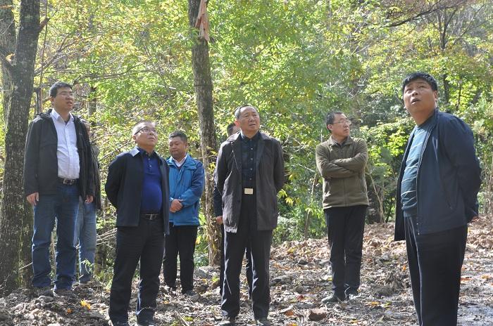 省林业局森林资源管理处赴优德88 ios林业局 督导检查秦岭生态环境保护工作