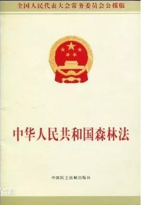 《中华人民共和国森林法》2019年12月28日修订通过 2020年7月1日施行