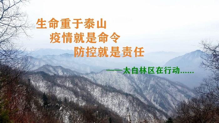 优德88 ios局局长王会福到林区检查疫情防控工作
