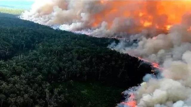 威聚焦丨210天!大火终于灭了!