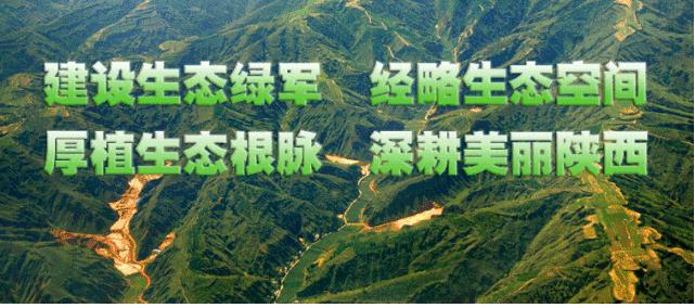 转载:聚智商策同心协契   守护祖脉秦岭靶向发力 秦岭生态保护专题研讨会在西安召开